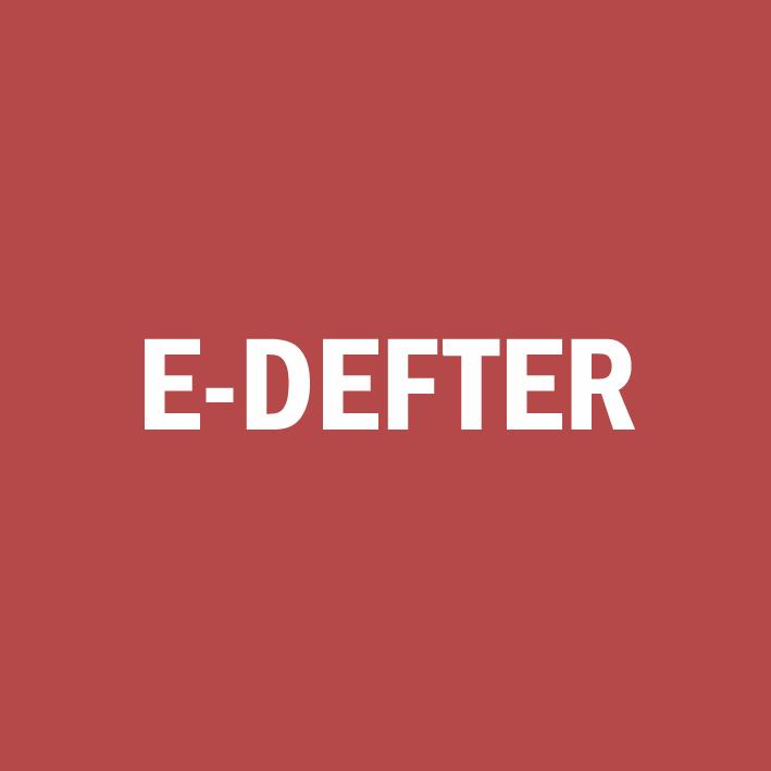 e-defter canias erp